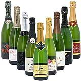 本格シャンパン製法の極上の泡9本セット((W0S902SE))(750mlx9本ワインセット)