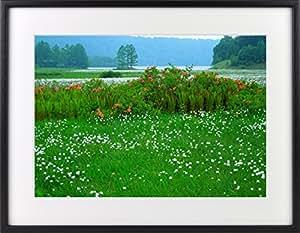 日本の絶景写真 クリスタルプリント 「ワタスゲ、レンゲツツジ咲く初夏の大江湿原」 木製フォトフレーム付 025