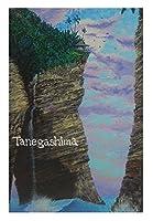 Island Trip ポストカード 絵画:ムーンシャイン(Moon Shine) 【島アート】
