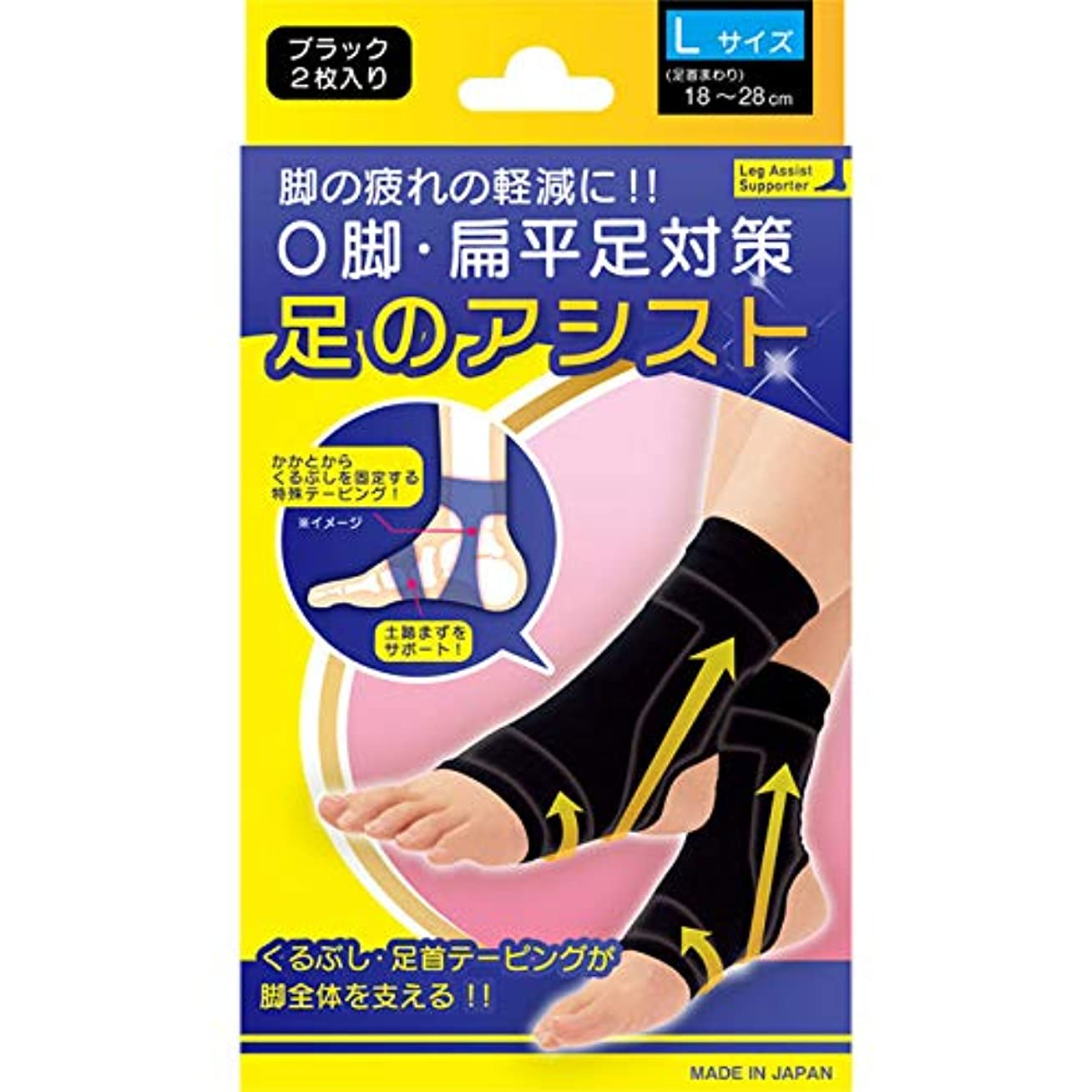 塩辛い彼らのパンフレット美脚足のアシスト ブラック 2枚入り Lサイズ(足首まわり18~28cm)