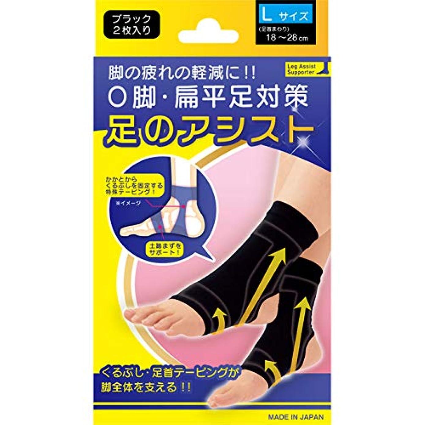 インフレーションクリスチャンカウントアップ美脚足のアシスト ブラック 2枚入り Lサイズ(足首まわり18~28cm)