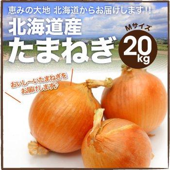 北海道産 玉ねぎ L大及び2Lサイズ 20kg詰め 玉葱 タマネギ たまねぎ