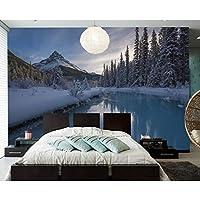 Ljjlm カナダ公園冬山川自然写真壁紙壁画用リビングルームソファーテレビ壁Bedroomnカフェバー-420X280cm