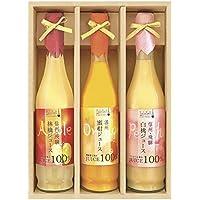 飛騨高山ファクトリー 果実搾り  JUC-30