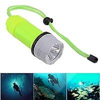 発信スタイルの楽しみ屋外水中LEDスキューバダイビング懐中電灯トーチ防水最新