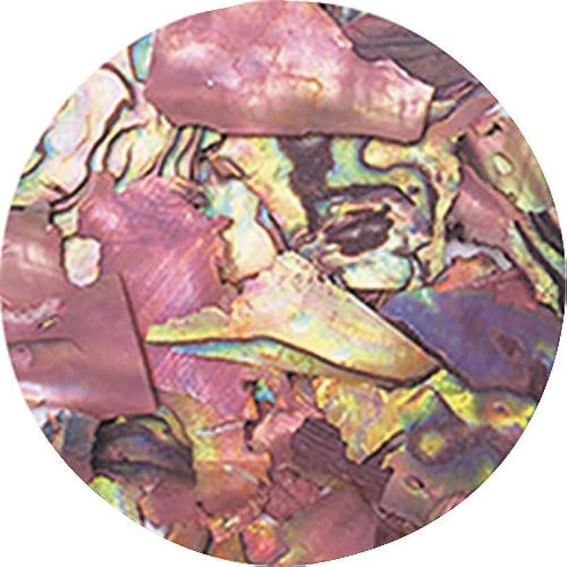 航空会社小切手月曜日ageha ナチュラルビーチシェル コーヒーマーブル 【アート?ネイル用品】