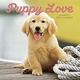 Puppy Love 2015 Wall Calendar by 2015 Calendars 画像