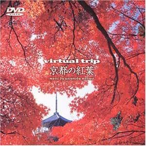 Virtual Trip 京都の紅葉 [DVD]