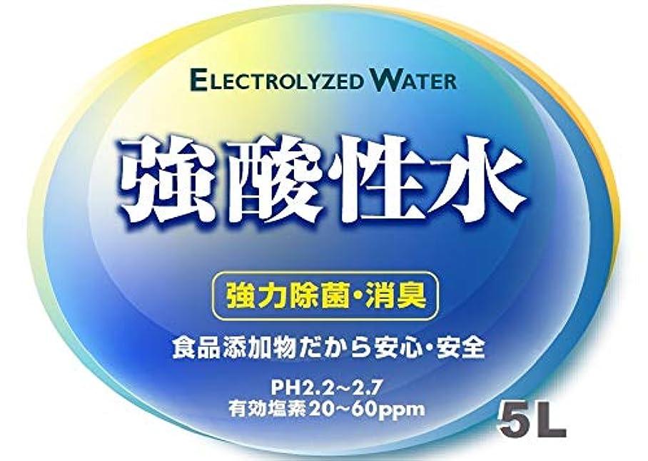 平凡その間病んでいる特許機器で生成 最強かつ安全の殺菌液 強酸性水 5L アトピー マラセチア にきび 汗疹 皮膚炎 花粉症 薬剤不使用 手洗い うがい インフルエンザ ノロウイルス O-157などに