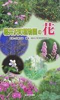 軽井沢町植物園の花