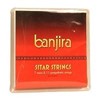 banjira 7弦シタール弦セット - ライト