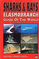 Sharks and Rays: Elasmobranch Guide of the World - Pacific Ocean, Indian Ocean, Red Sea, Atlantic Ocean, Caribbean, Arctic Ocean