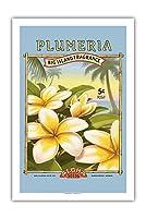"""プルメリア -""""アロハ""""種子 - ビッグアイランドシードカンパニー - ビッグアイランドフレグランス - ヴィンテージシードパケット によって作成された カーン・エリクソン - プレミアム290gsmジークレーアートプリント - 61cm x 91cm"""
