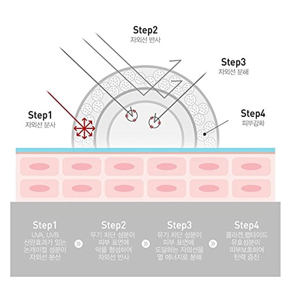額しみ版セルピュチョンCレーザーサンスクリーン100(SPF50+/PA+++)50ml、Cell Fusion C Laser Sunscreen 100 (SPF50+ / PA+++) 50ml [並行輸入品]
