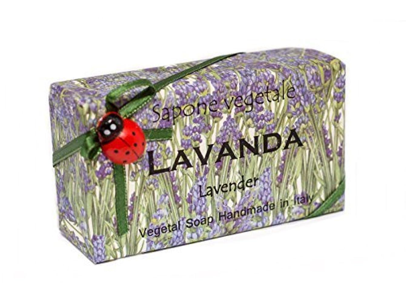 買い物に行くポーク窒息させるAlchimia 高級ギフトボックス付きイタリアからLavenda、野菜手作り石鹸バー、 [並行輸入品]