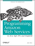 Programming Amazon Web Services: S3, EC2, SQS, FPS, and SimpleDB (English Edition)