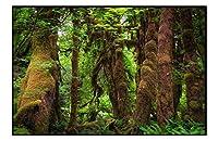 芸術品印刷された黒いアルミニウムフレームの家の装飾の絵画(森緑木茂み苔)40x60cm