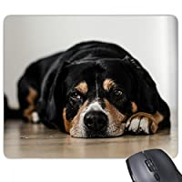 ペットと動物の写真の床 ノンスリップゴムパッドのゲームマウスパッドプレゼント事務所