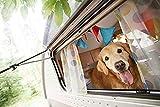 OUTDOOR STYLEBOOK with Dogs アウトドアスタイルブック ウィズ ドッグス (エイムック 4131) 画像
