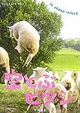 空とぶヒツジ in sheep island (新風舎文庫―POST CARD BOOK)