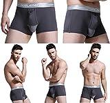 蒸れない メンズ ボクサー パンツ 陰嚢 陰茎 分離型 機能性 下着 ファッション トランクス (XXXL, 灰色 グレー)