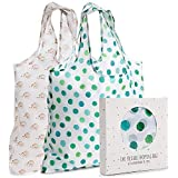 Reusable Grocery Shopping Bags, Polyester, Set of 2, with Handles - Large, Foldable Tote Bag Sets for Carrying Groceries - Ec