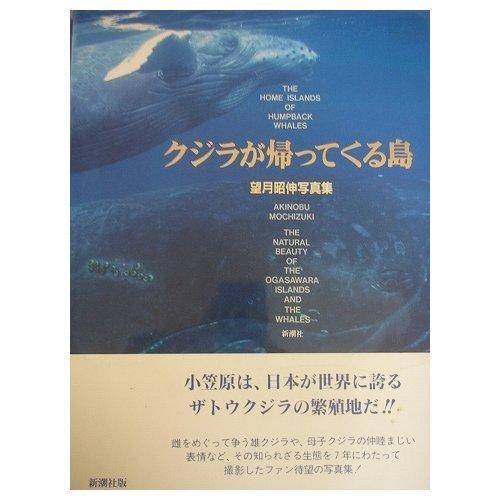 クジラが帰ってくる島―望月昭伸写真集