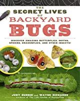 The Secret Lives of Backyard Bugs: Discover Amazing Butterflies, Moths, Spiders, Dragonflies, and Other Insects! by Judy Burris Wayne Richards(2011-06-01)