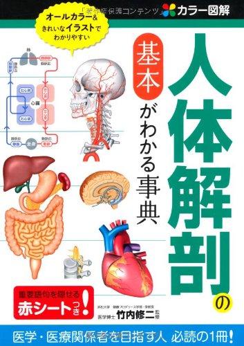 カラー図解 人体解剖の基本がわかる事典の詳細を見る