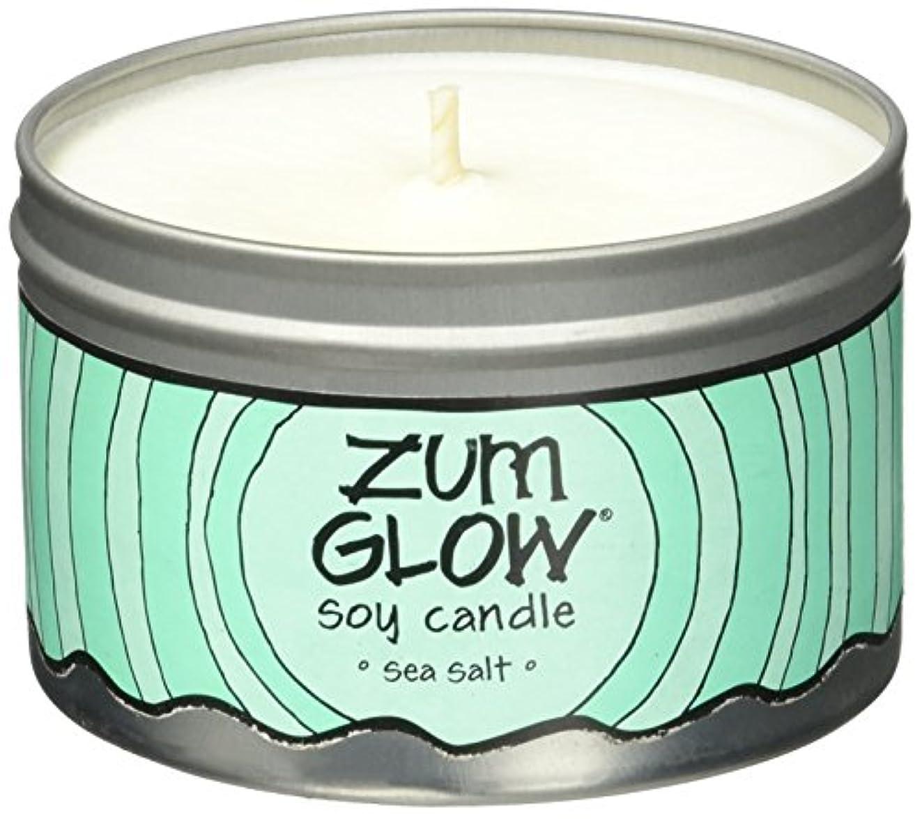 彼らは寂しいアベニューIndigo Wild Zum Glow Soy Candles, Sea Salt [並行輸入品]