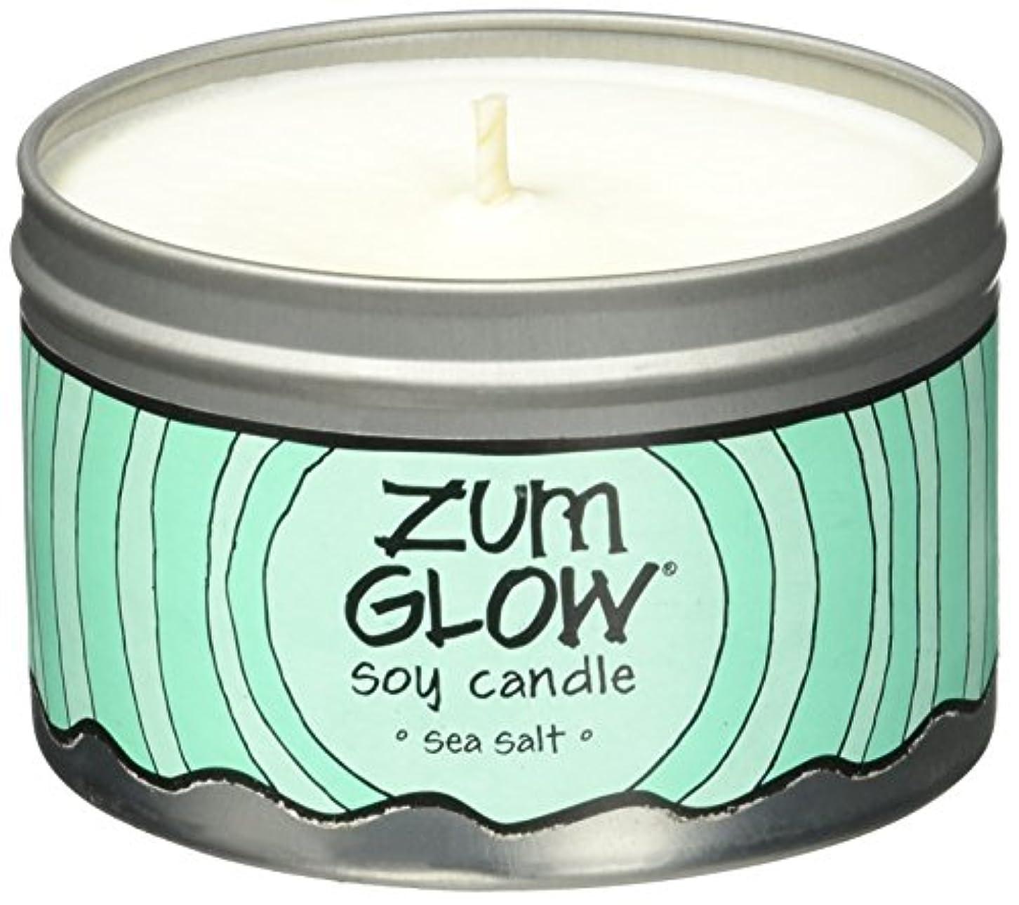 家事をする迷路建築Indigo Wild Zum Glow Soy Candles, Sea Salt [並行輸入品]
