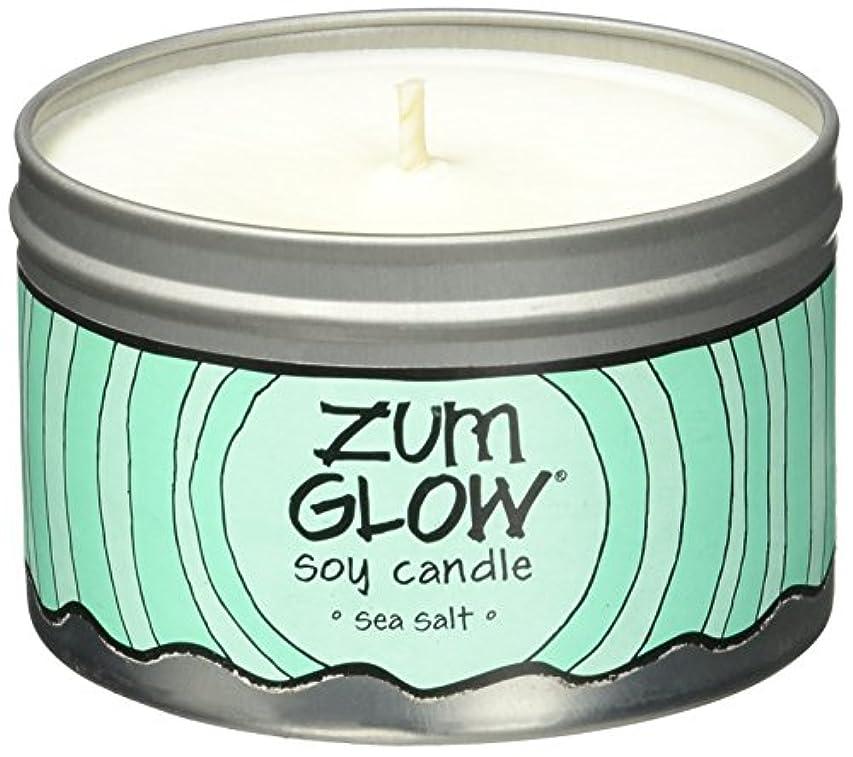意図するナチュラカリキュラムIndigo Wild Zum Glow Soy Candles, Sea Salt [並行輸入品]