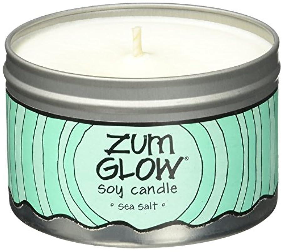 スペード祖母住むIndigo Wild Zum Glow Soy Candles, Sea Salt [並行輸入品]