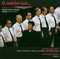Wagner/Beethoven:O Welche Lust