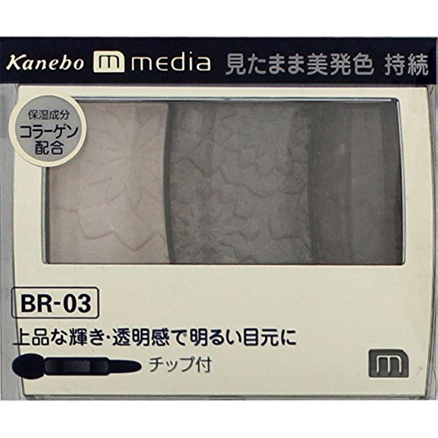 抵抗するキャメルブル【カネボウ】 メディア グラデカラーアイシャドウ BR-03