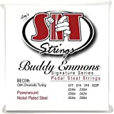 S.I.T. String BEC6th Buddy Emmons Pedal Steel C6th Tuning Guitar String [並行輸入品]