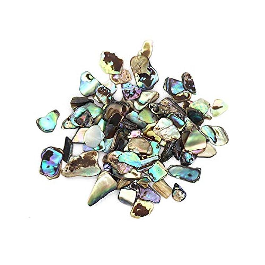 害虫助けてランクニュアンスシェルストーン 約4g ナチュラルストーン 偏光 立体パーツ 天然石 ネイルアート シェルストーン クラッシュシェル ブロックシェル