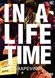 IN A LIFETIME (DVD盤) 画像