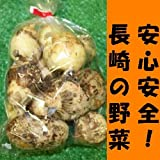 九州 長崎県産 農産物直売所 販売用 里芋