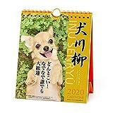 アートプリントジャパン 2020年 チワワ川柳(週めくり)カレンダー vol.008 1000109217
