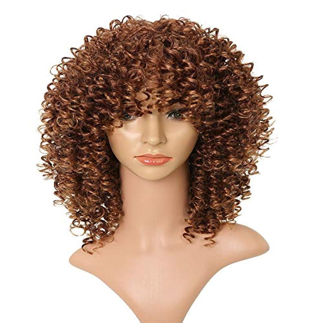 合理的ブラウザ湿気の多いフェザーエクステンションブラウン女性用カーリーキンキーオンブルブロンドネイチャーブラウンアフリカ合成かつら高温シルク繊維フード16インチ