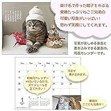 アクティブコーポレーション 2019年 猫 カレンダー 卓上 100% Cat hair ACL-590 (2019年 1月始まり) 画像