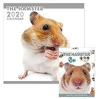 THE HAMSTER カレンダー 【壁掛け・卓上2点セット】 2020年カレンダー CL-1140-1180