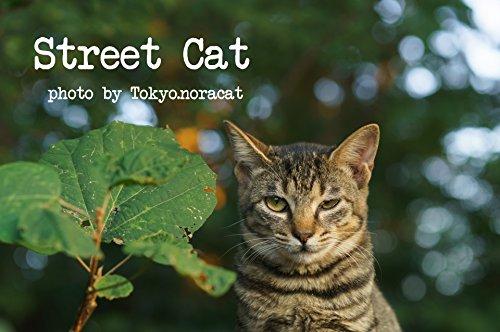 Street Catの詳細を見る