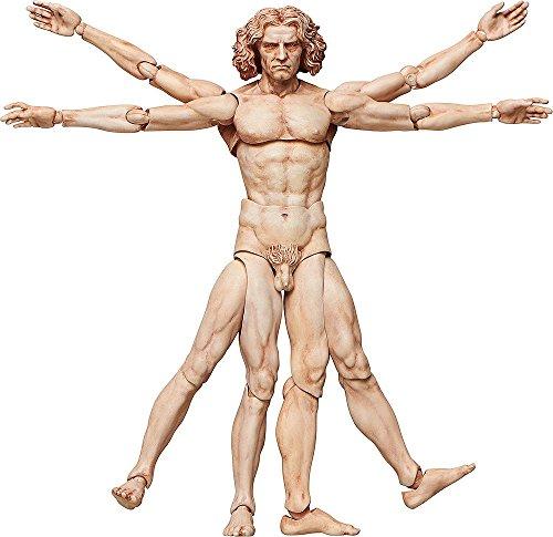 figma テーブル美術館 ウィトルウィウス的人体図 ノンスケール ABS&PVC製 塗装済み可動フィギュアの詳細を見る