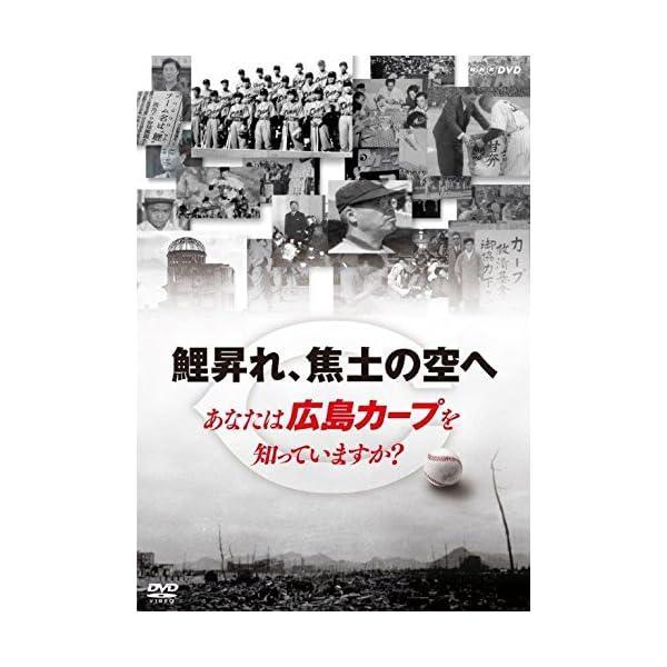 鯉昇れ、焦土の空へ あなたは広島カープを知ってい...の商品画像