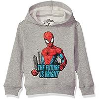 Marvel Boys' Toddler Spider-Man Pullover Fleece, Future