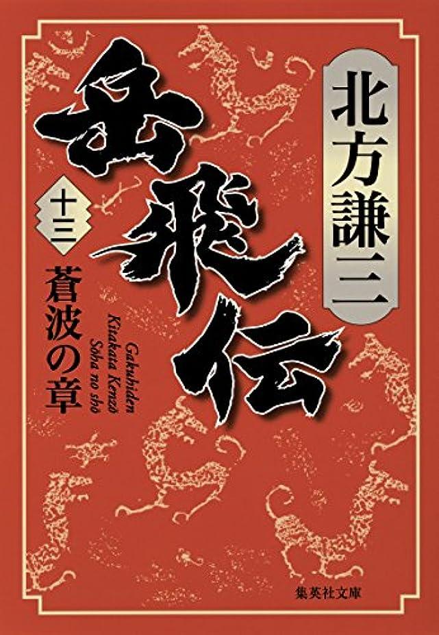 ベース頑固な陪審岳飛伝 十三 蒼波の章 (集英社文庫)