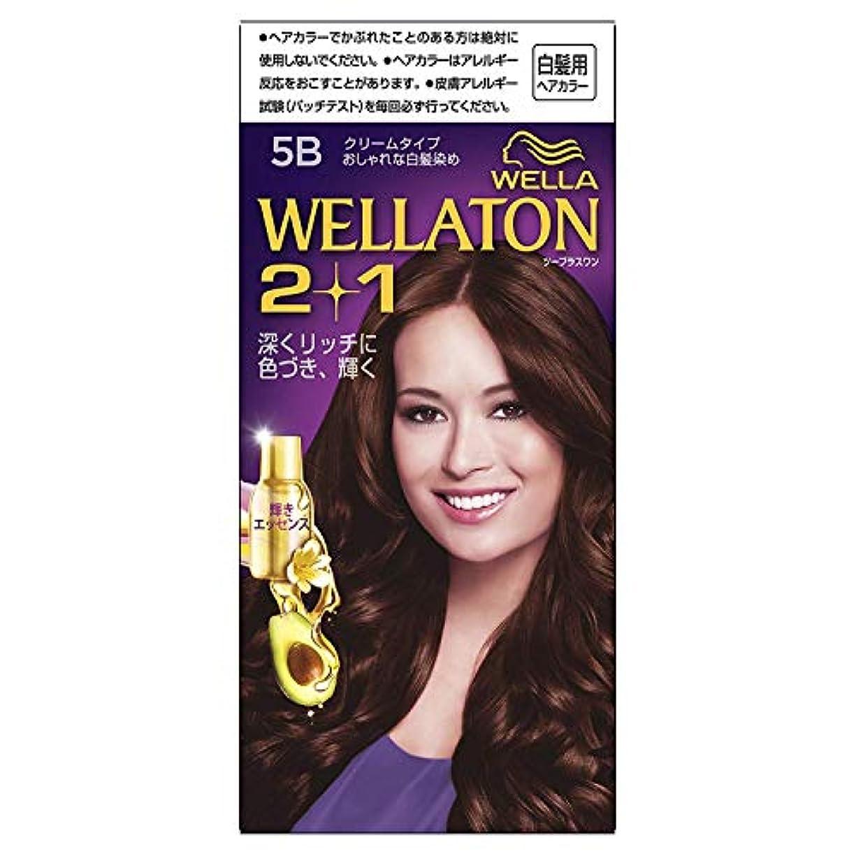 助けになるラベル地理ウエラトーン2+1 白髪染め クリームタイプ 5B [医薬部外品]×6個