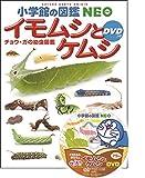 小学館の図鑑NEO イモムシとケムシ DVDつき: チョウ・ガの幼虫図鑑 画像
